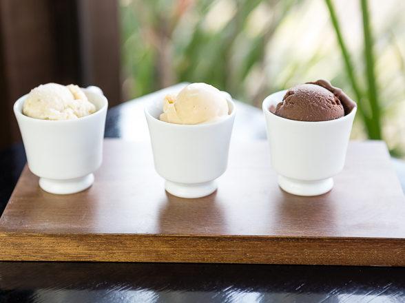 Nossos sorvetes artesanais