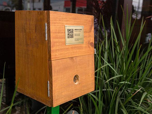 Abelhas sem ferrão: um mundo dentro da caixa